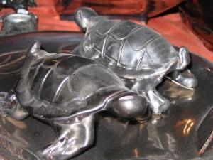 Metallic turttles